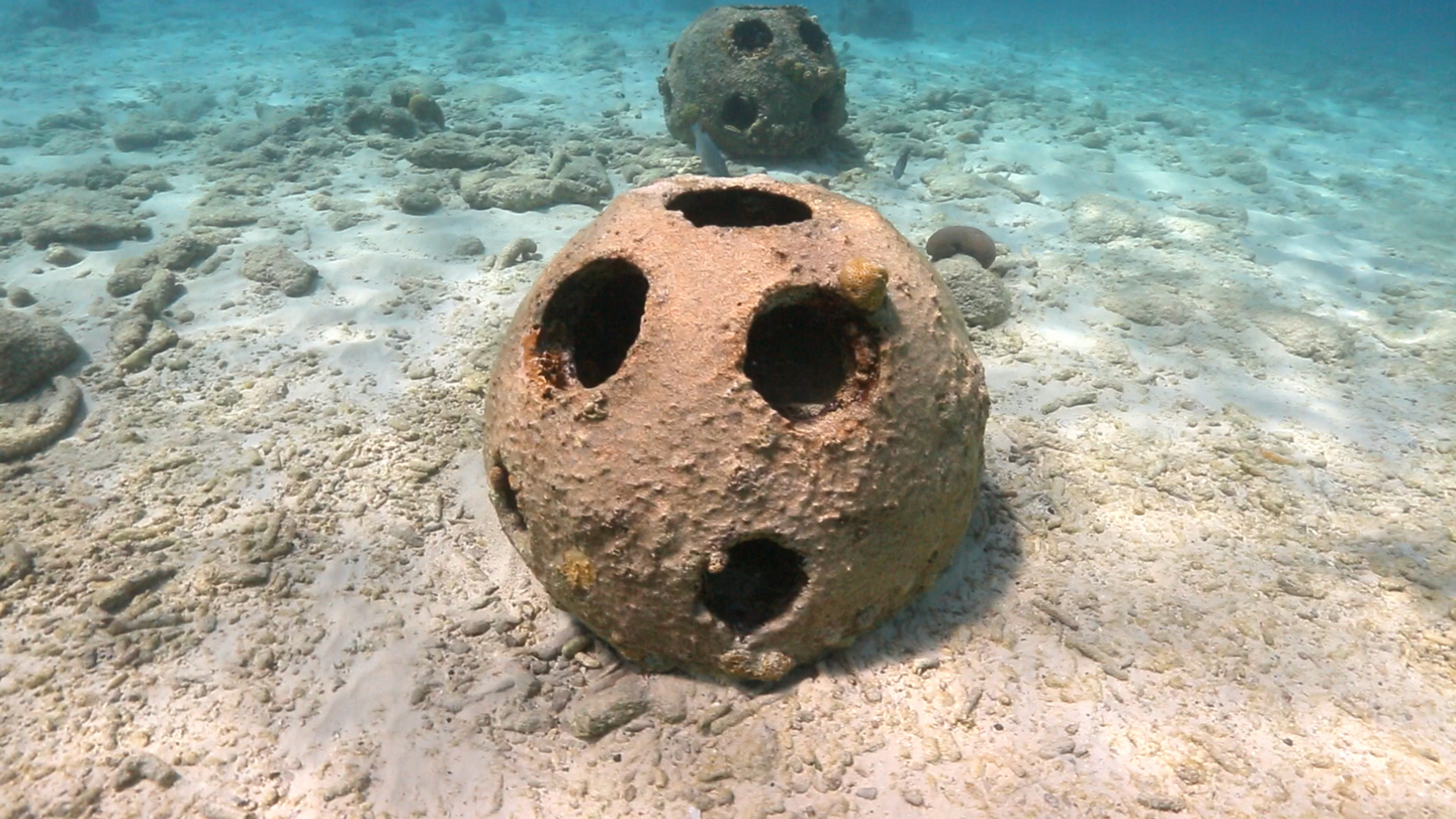 Reef ball artificial reefs