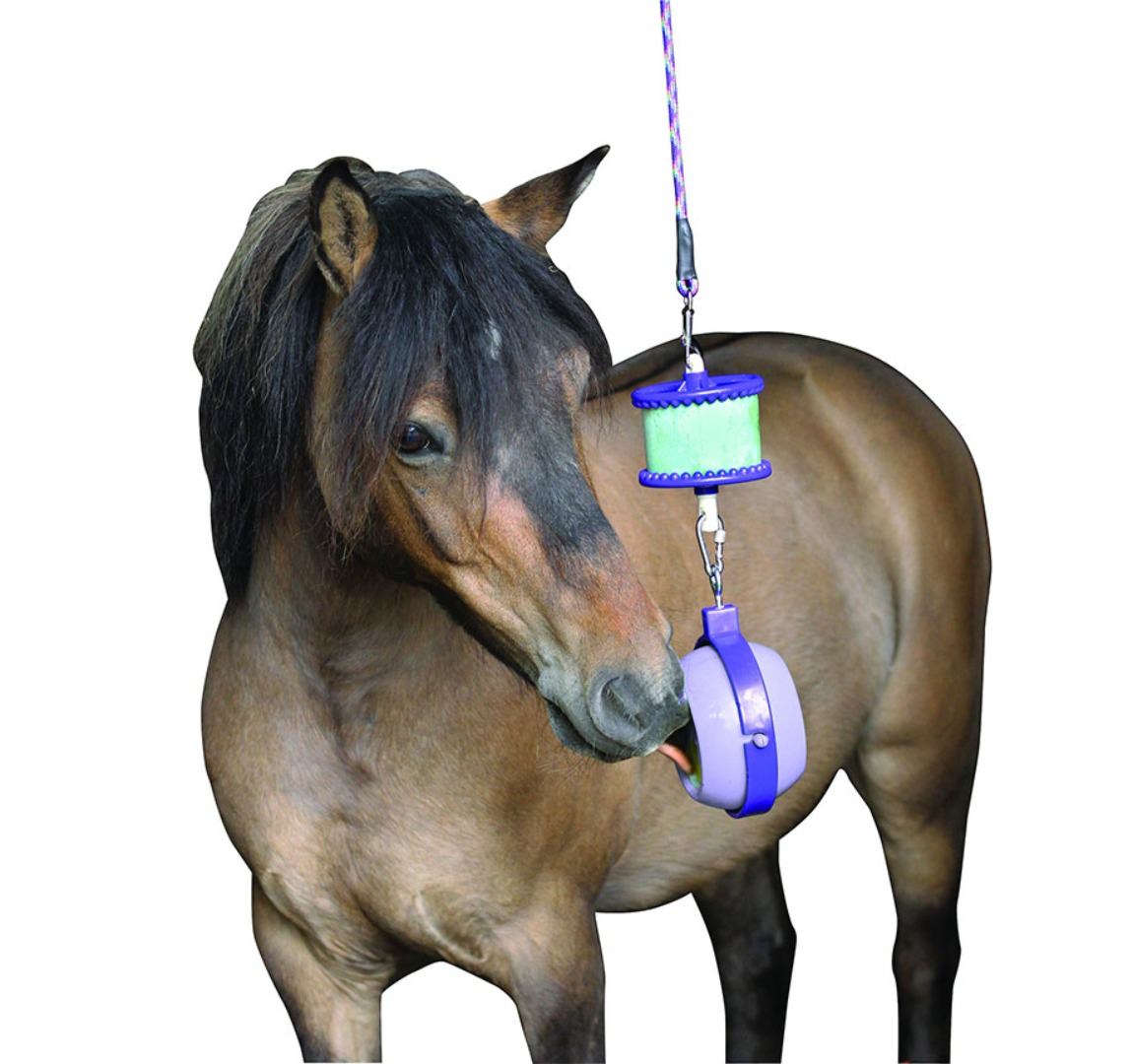 Horse Toys For Stable & Fields