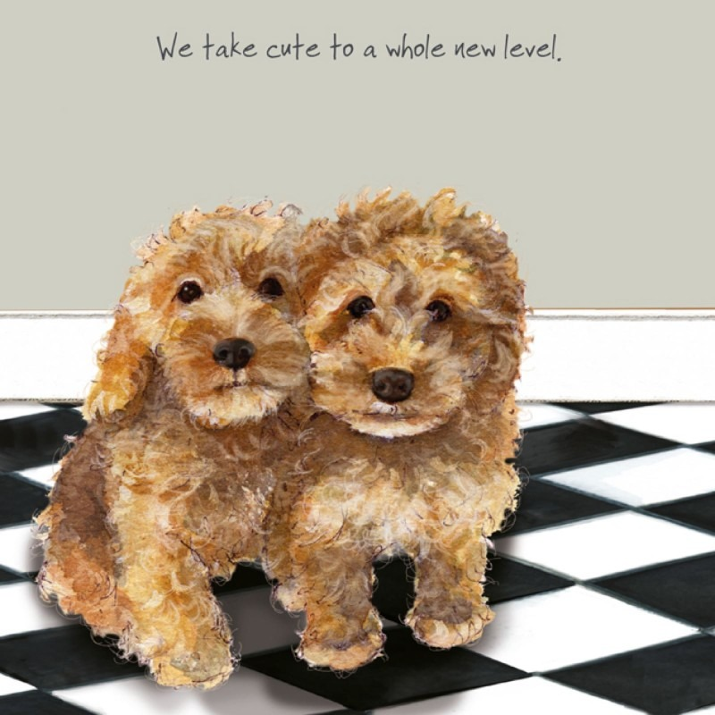 Dog And Cat Lovers Cards