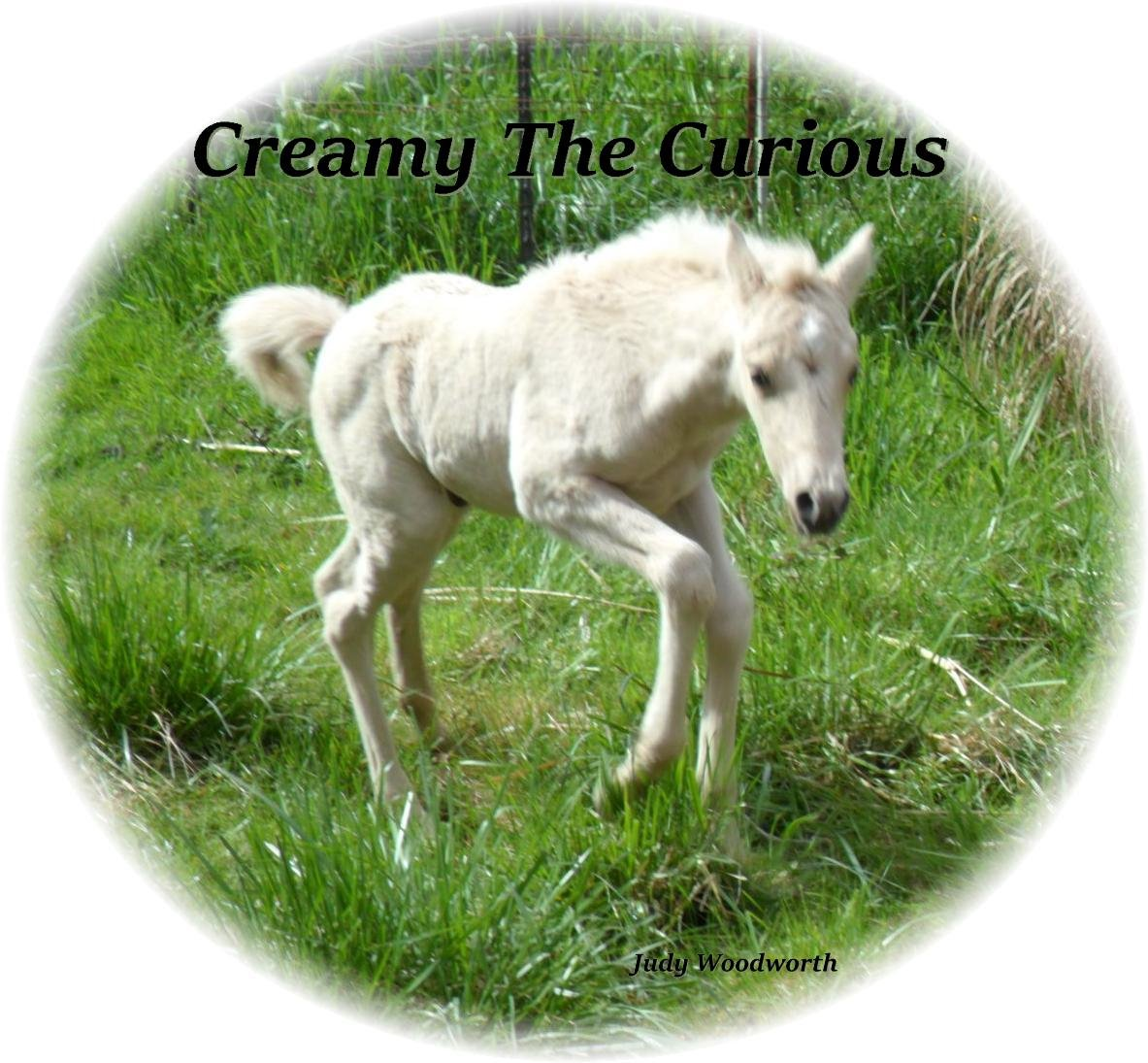Creamy The Curious 1