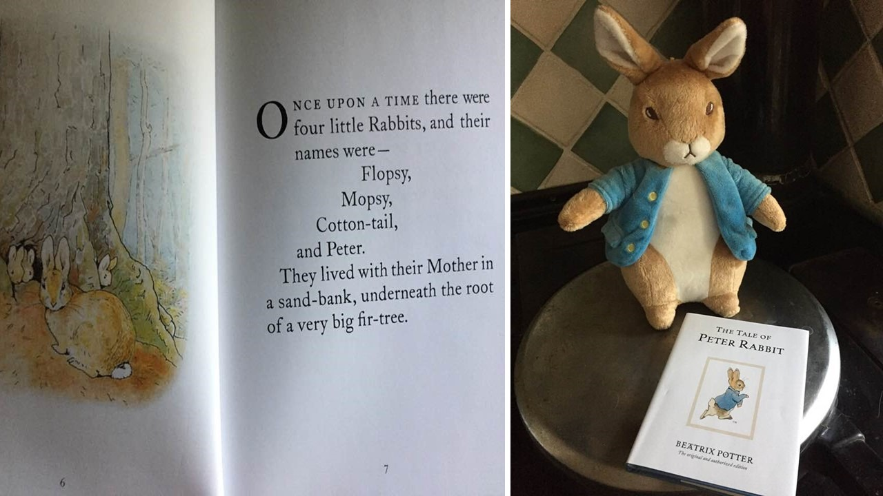 Free - Peter Rabbit intro sentence