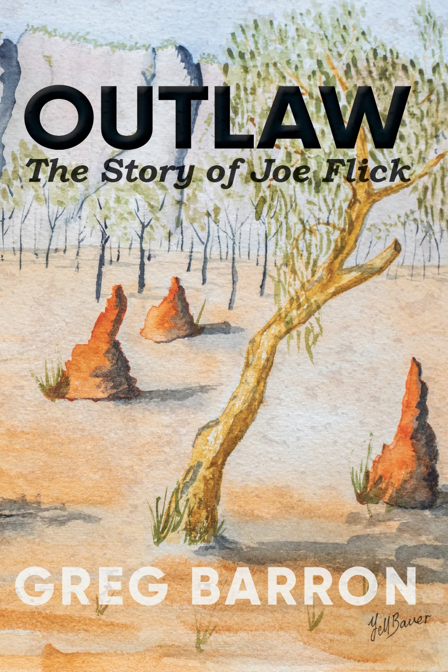 OUTLAW The Story of Joe Flick by Greg Barron