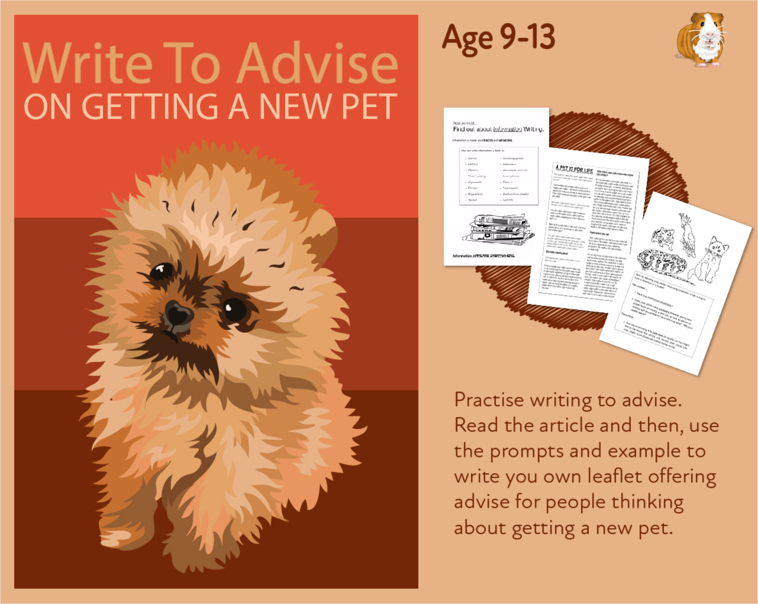 Practise Writing To Advise On Getting A New Pet (9-14 years)