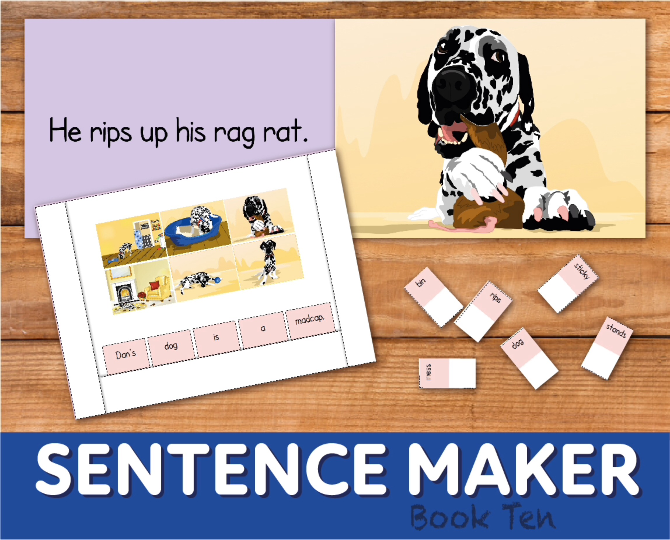 Make Sentences With The Sentence Maker: Book 10