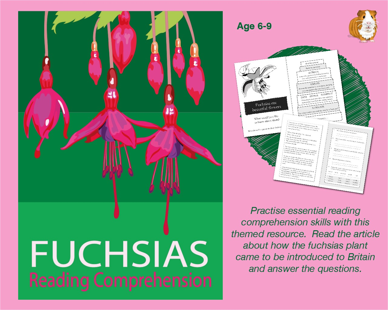 Let's Practise Our Reading Comprehension: Fuchsias Are Beautiful Flowers (6-9 years)