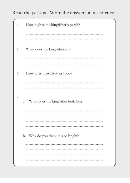 Let's Practise Our Reading Comprehension (6-9 years) Print Version