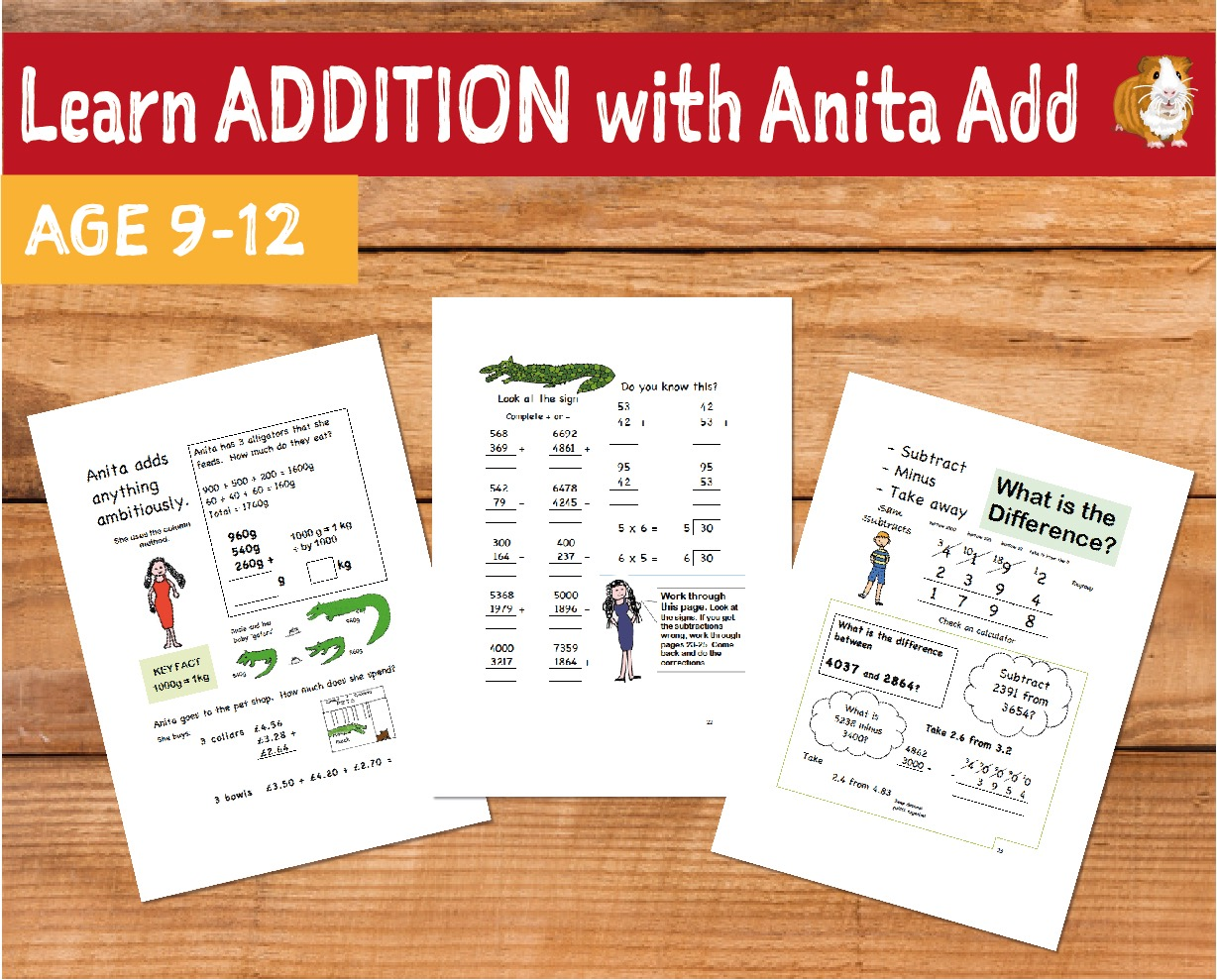 Learn Addition With Anita Add (9-12 years)