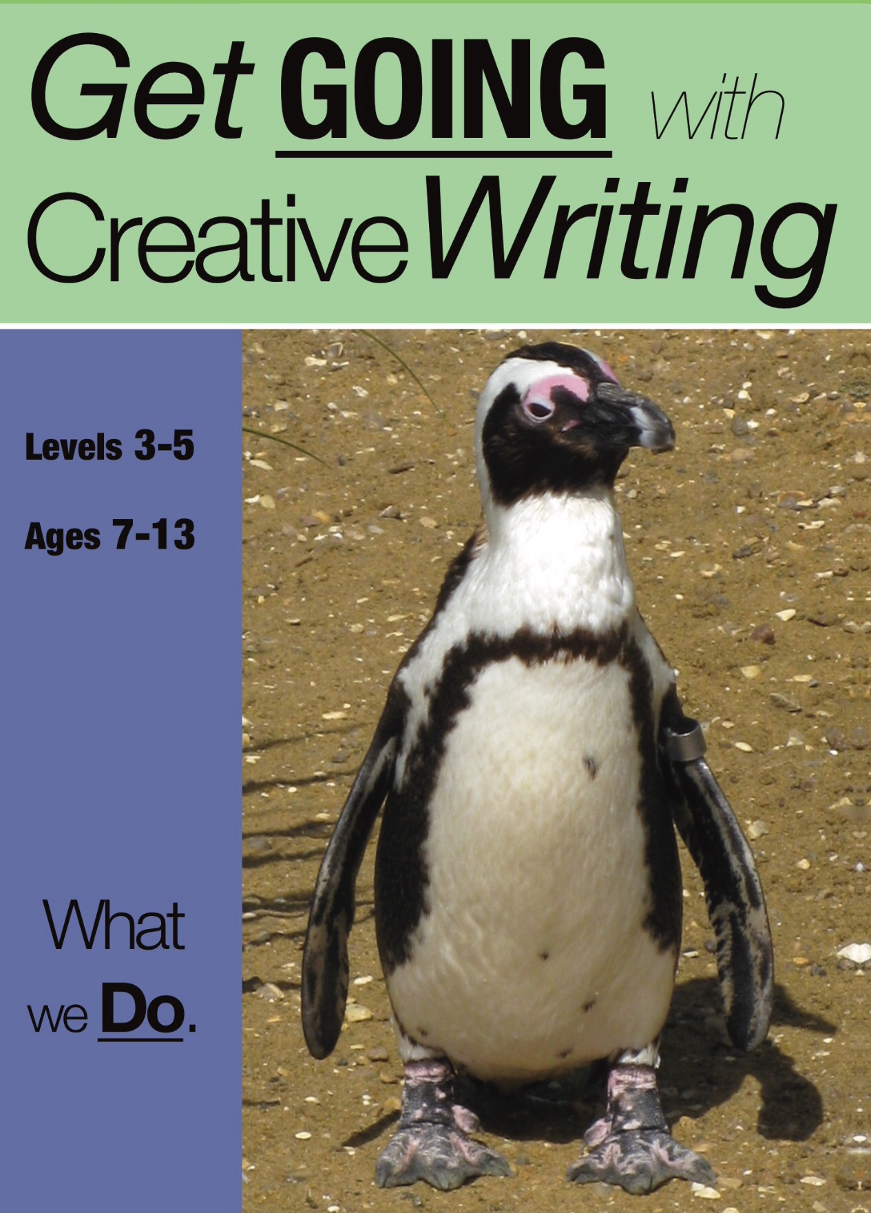 What We Do: Get Going With Creative Writing (And Other Forms Of Writing) (7-11) Digital Download