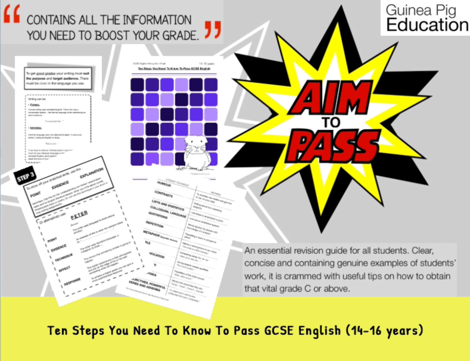Ten Steps You Need To Know To Pass GCSE English (14-16 years)