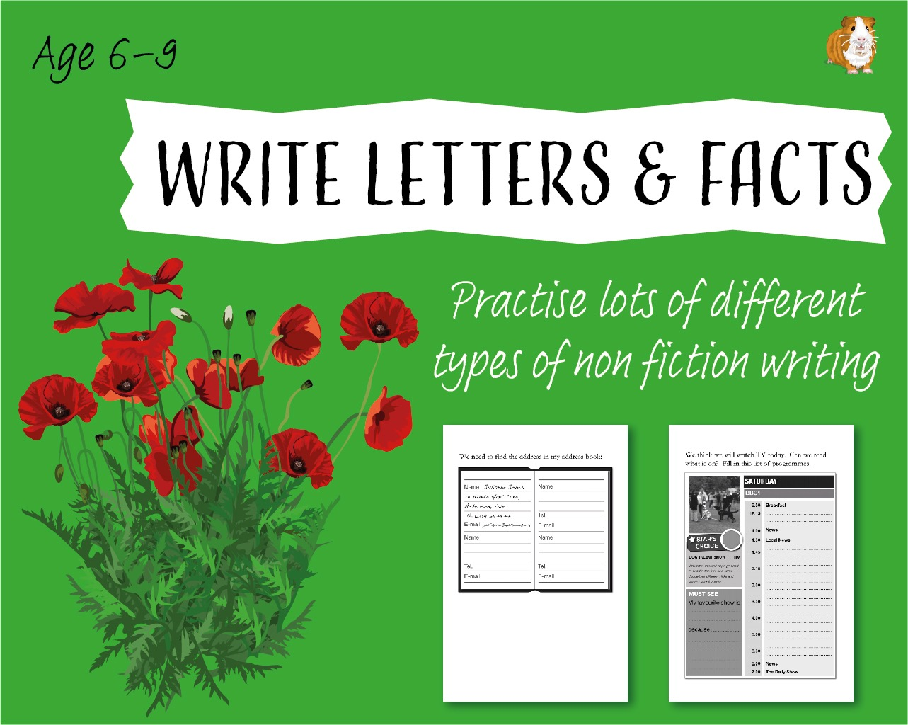 Practise Lots Of Different Types Of Non Fiction Writing (6-9 years)
