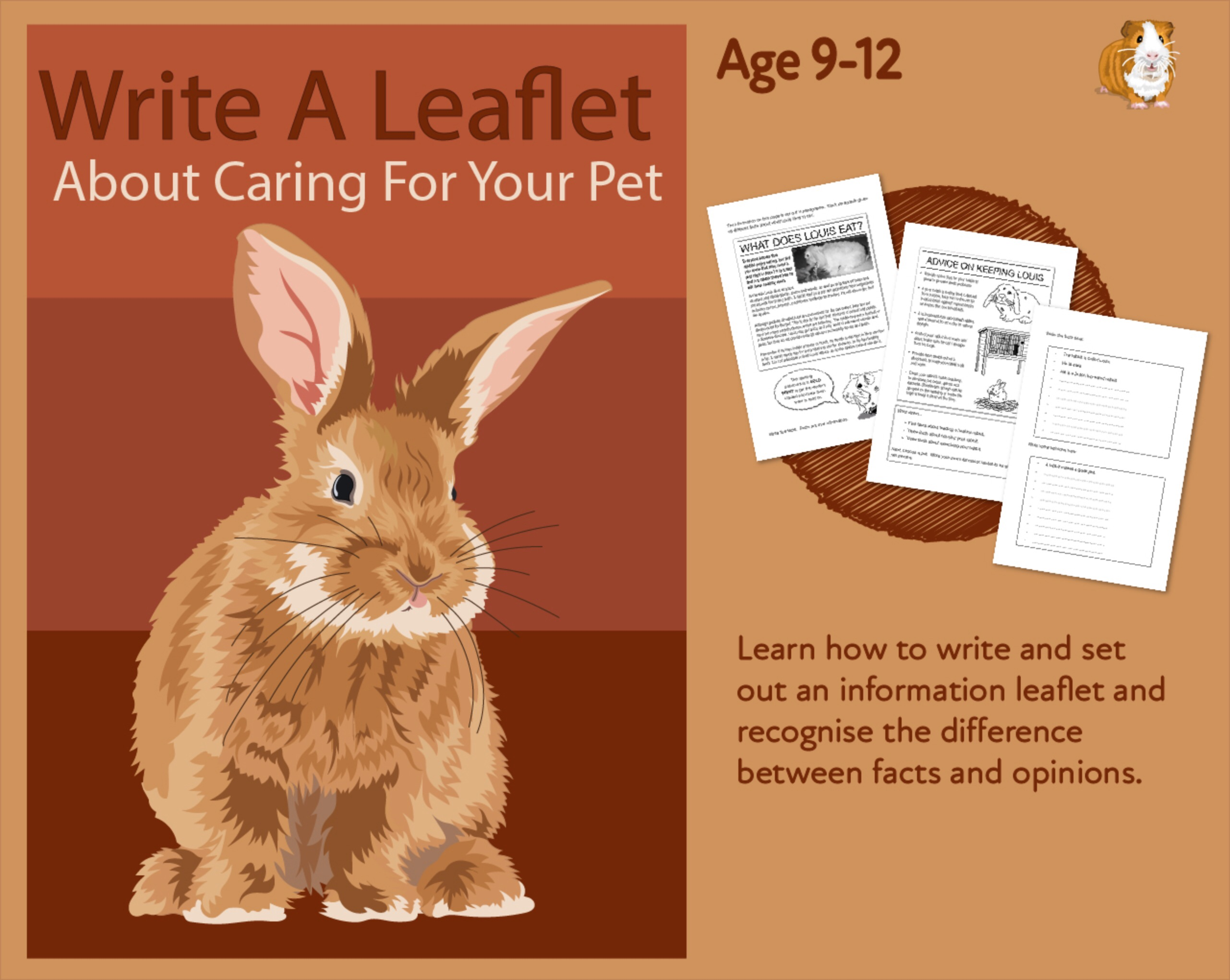 Practise Writing A Leaflet On Caring For Your Pet (9-14 years)