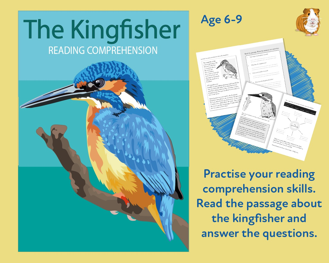 Let's Practise Our Reading Comprehension: The Kingfisher (6-9 years)