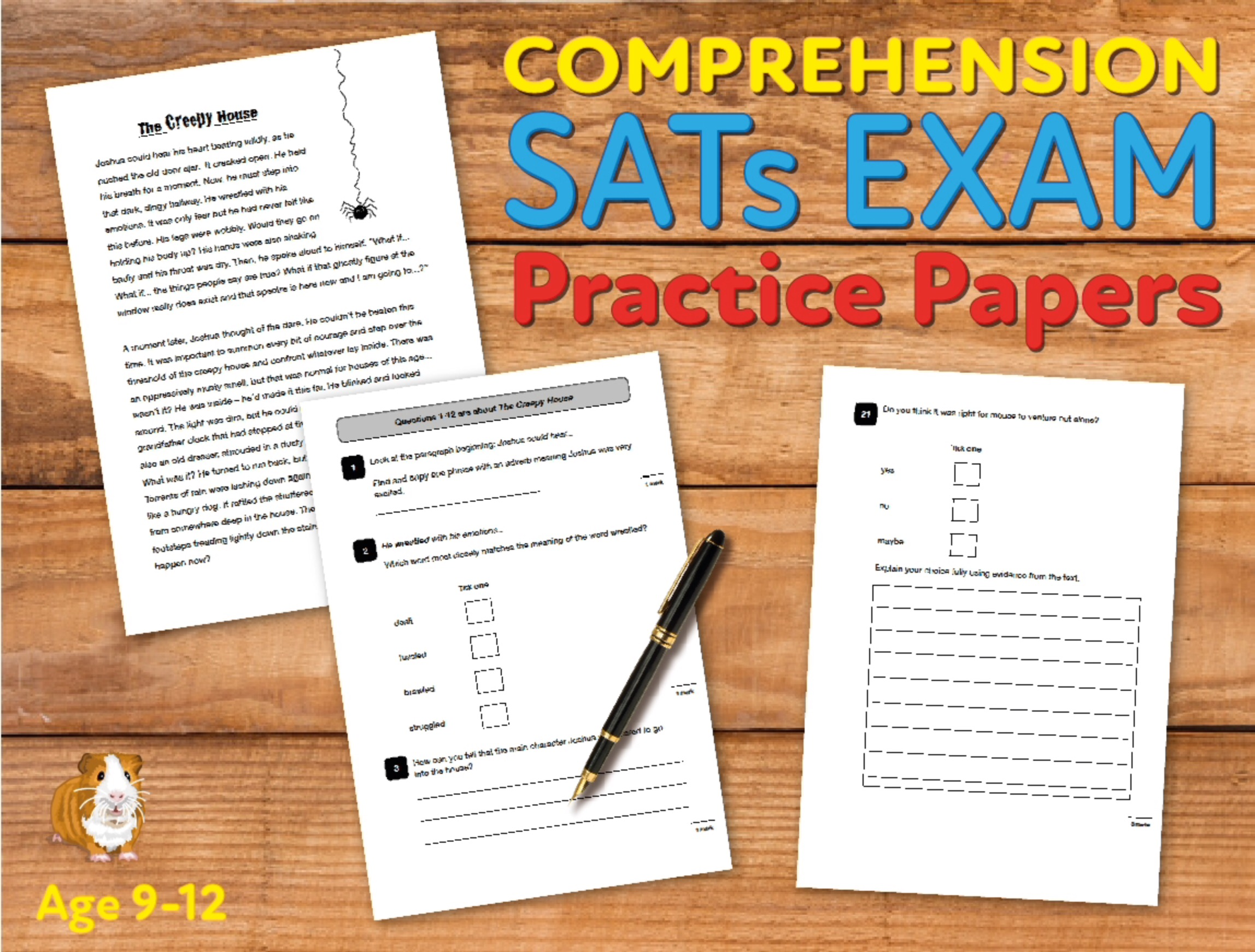 SATS Comprehension Tests (At The Stroke Of Midnight) 9-12 years Digital Download