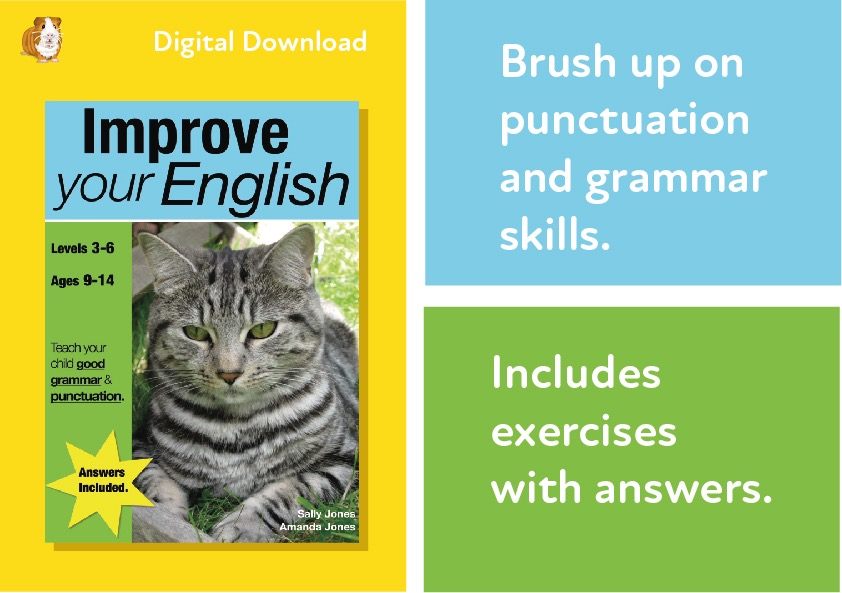 Improve Your English (age 8-12) Teach Your Child Good Punctuation & Grammar Digital Download