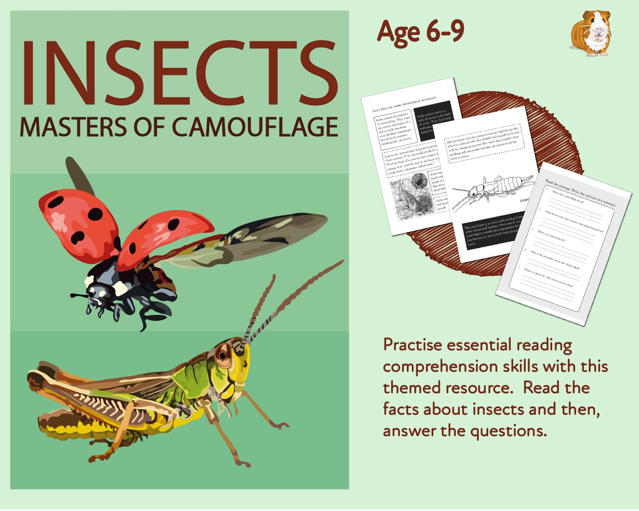 Let's Practise Our Reading Comprehension: Insects Are a Masters Of Camouflage (6-9 years)
