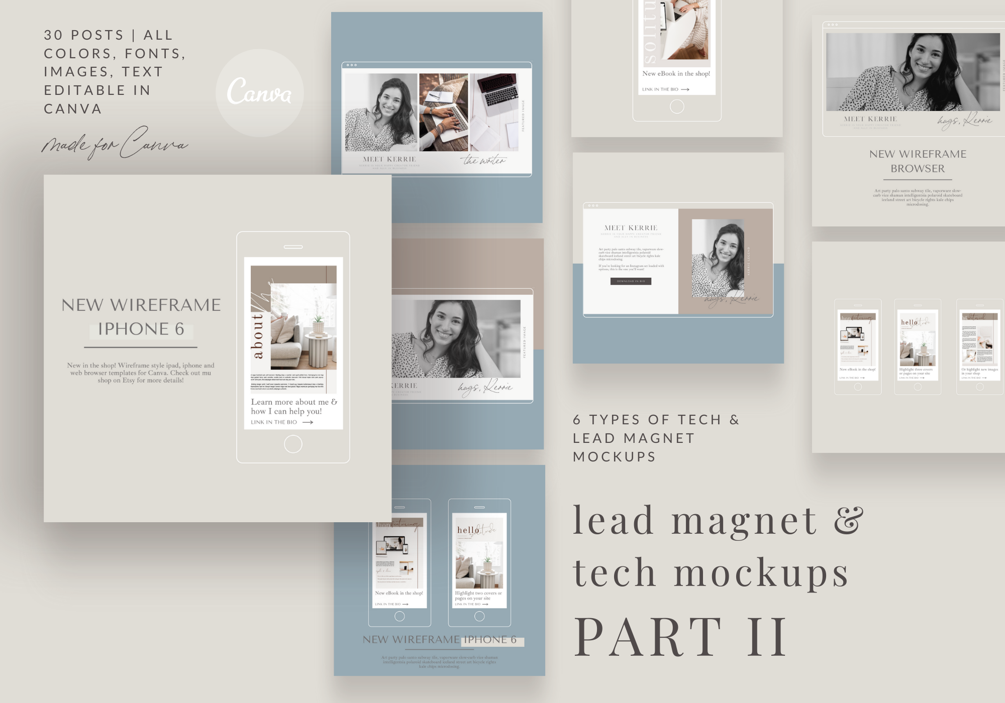 Lead Magnet and Website Custom Wireframe Tech Mockups - PART 2