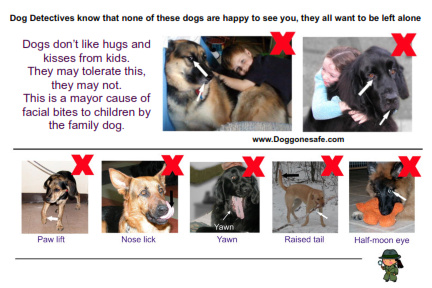 Doggone Safe Body Language Post Cards