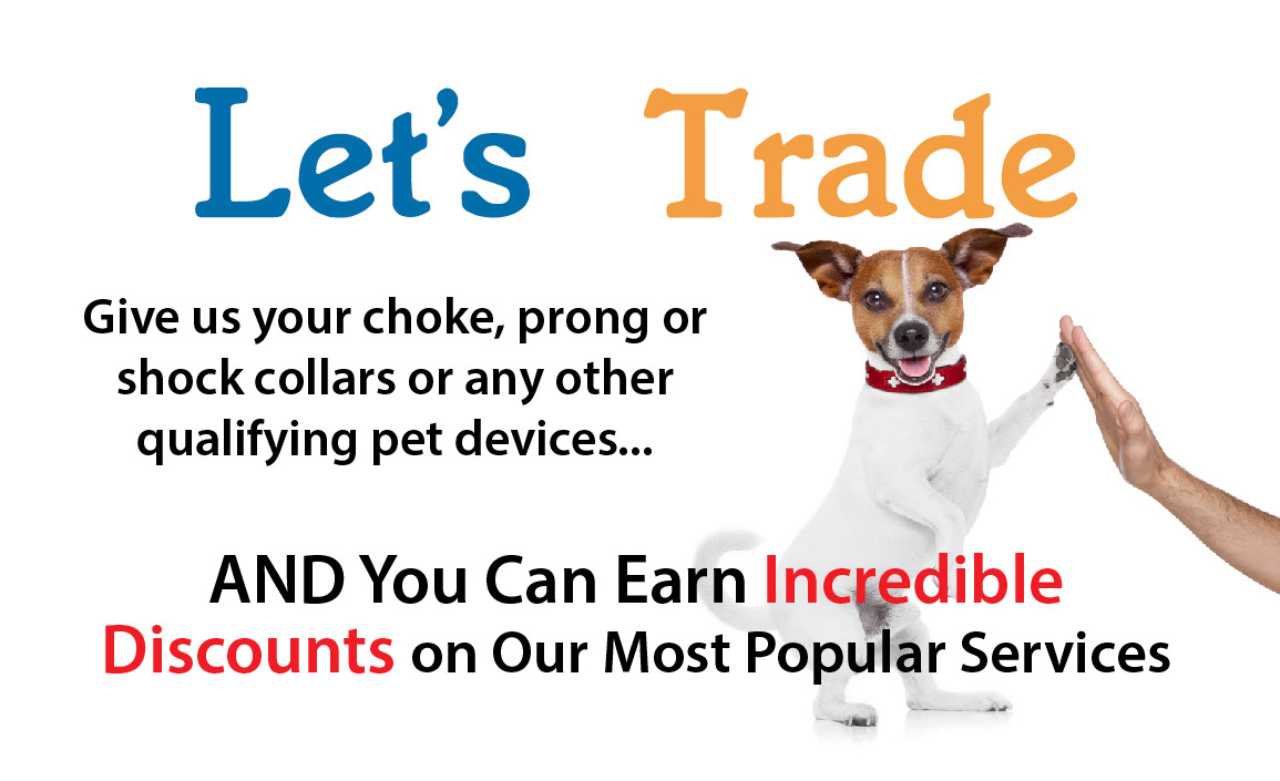 Project tRade Discount Card - Customizable
