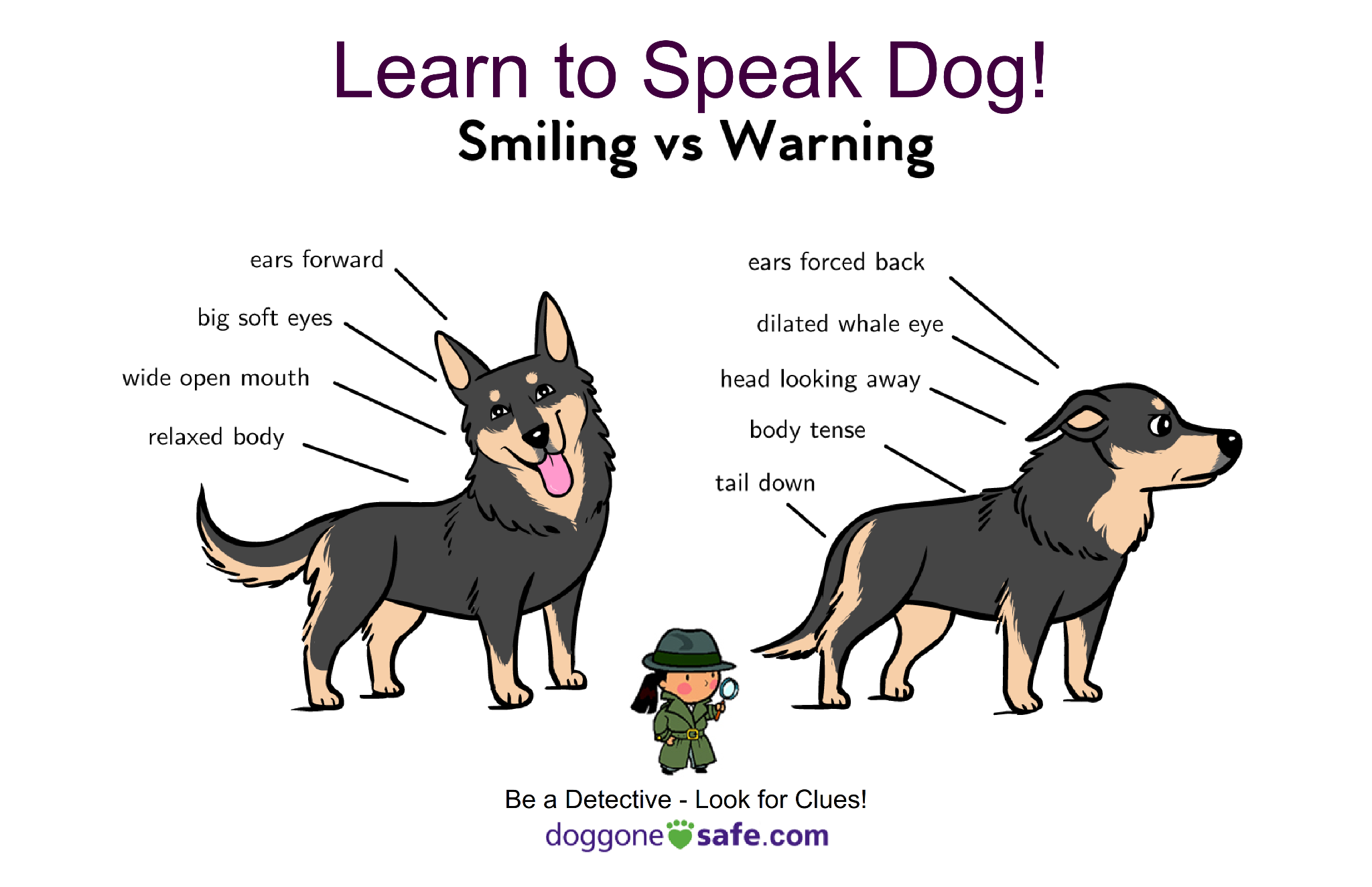 Canine Communication. A set of 13 Posters 11 x 17 (Kit Size)