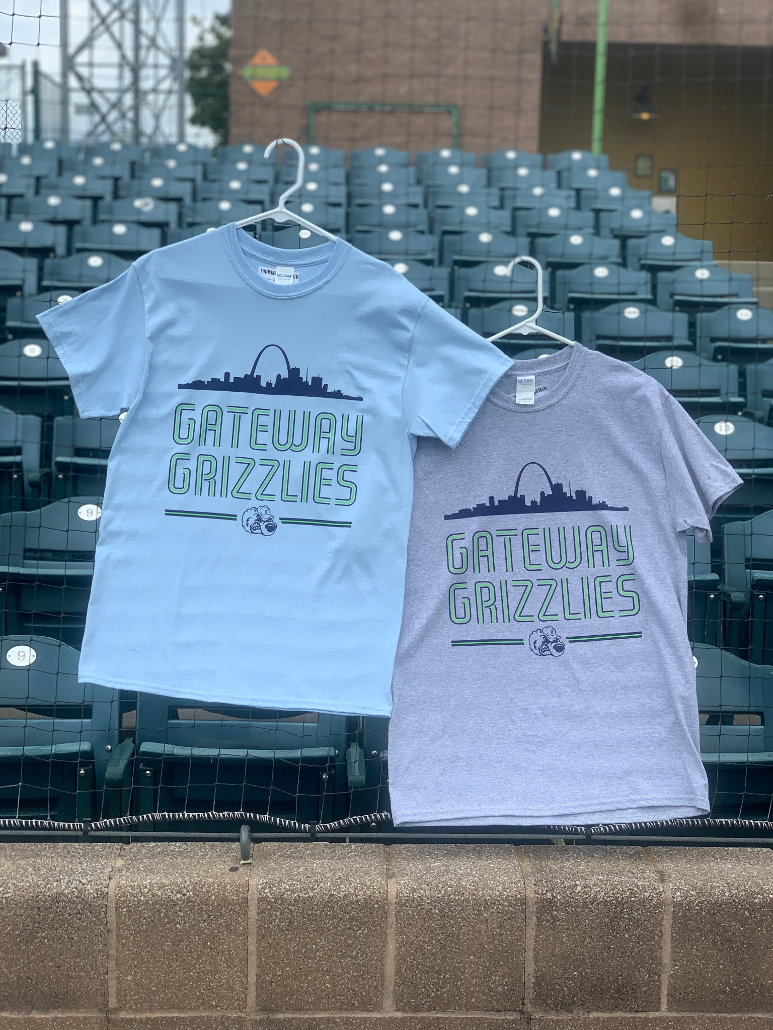 Grizzlies Arch T-shirt