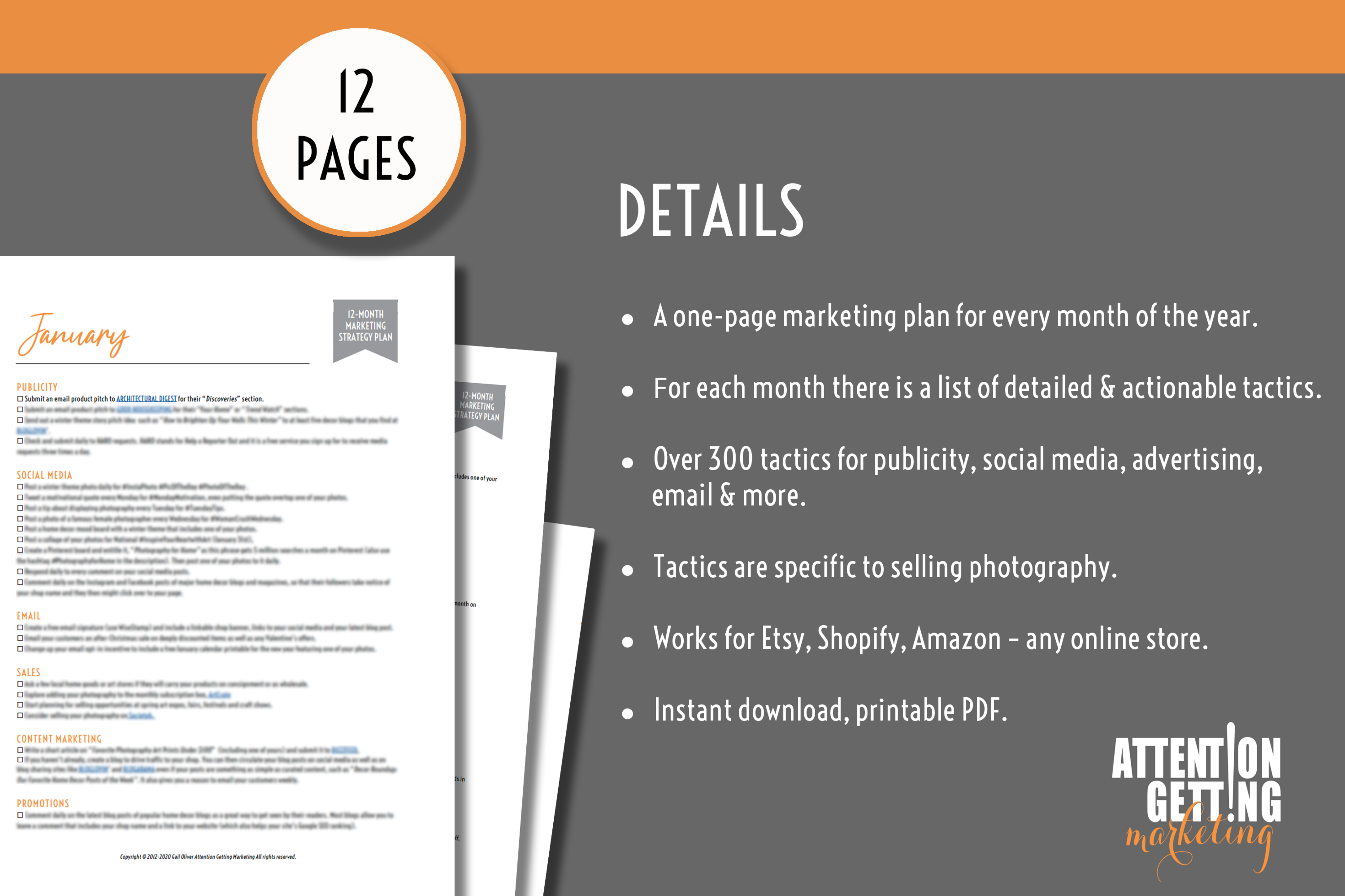 12 Month Marketing Strategy Plan for Online Photography Shops