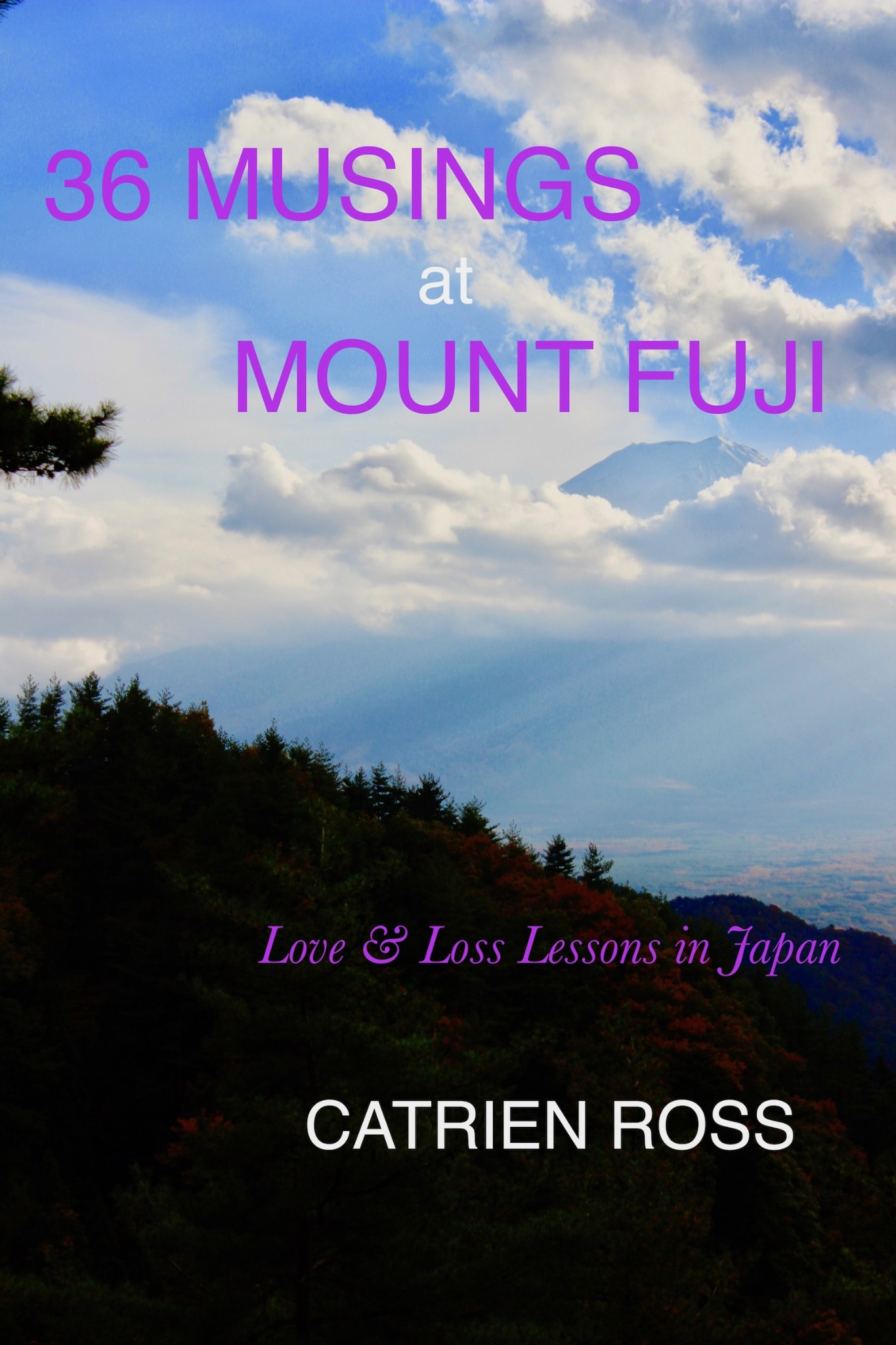 36 MUSINGS AT MOUNT FUJI