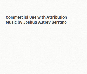 2020 the Album by Joshua Autrey Serrano