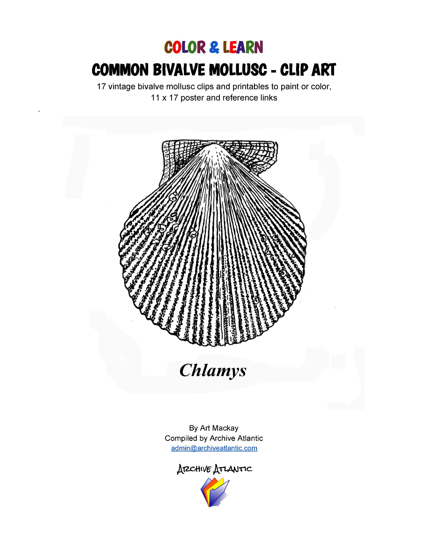 COLOR & LEARN - Common Marine Bivalve Molluscs