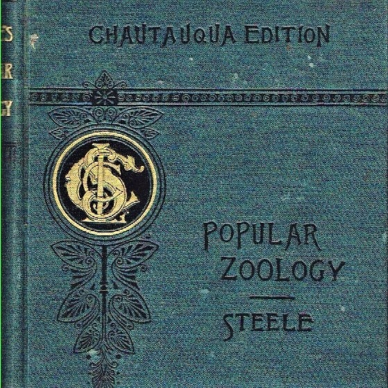 Download Popular Zoology by Steele and Jenks 1887