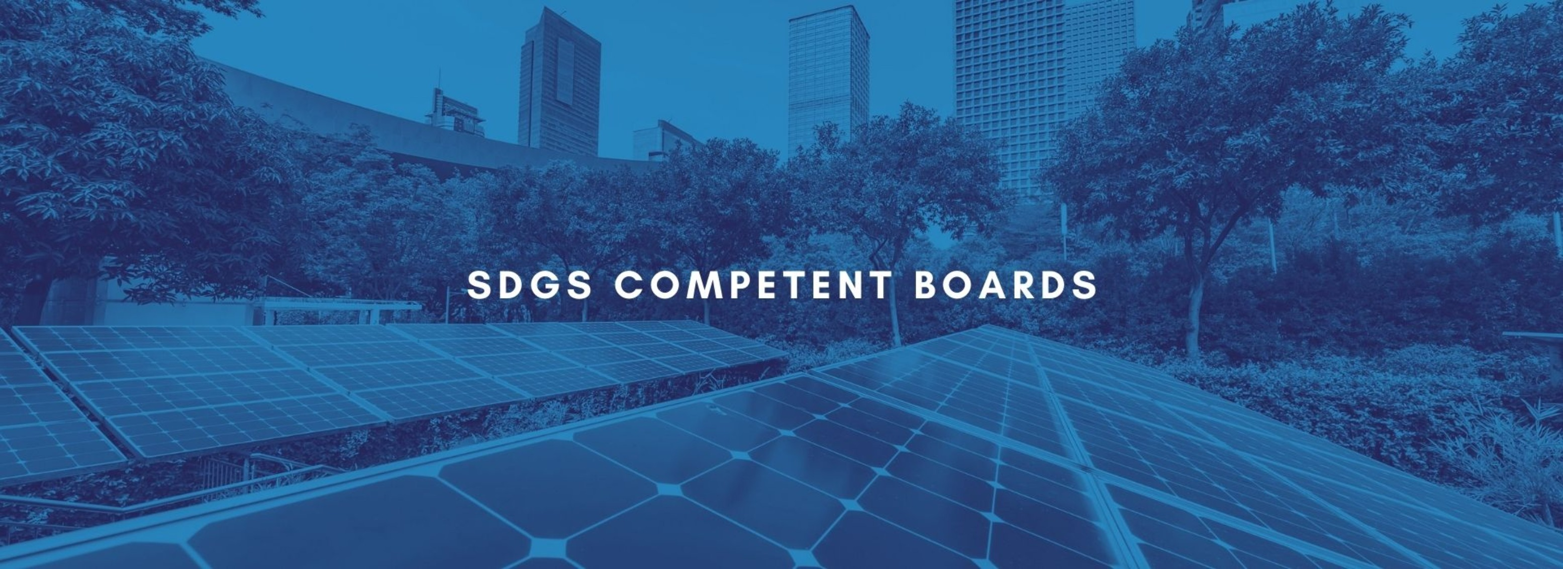 BP | SDGs Competent Boards | March 9th, 2021