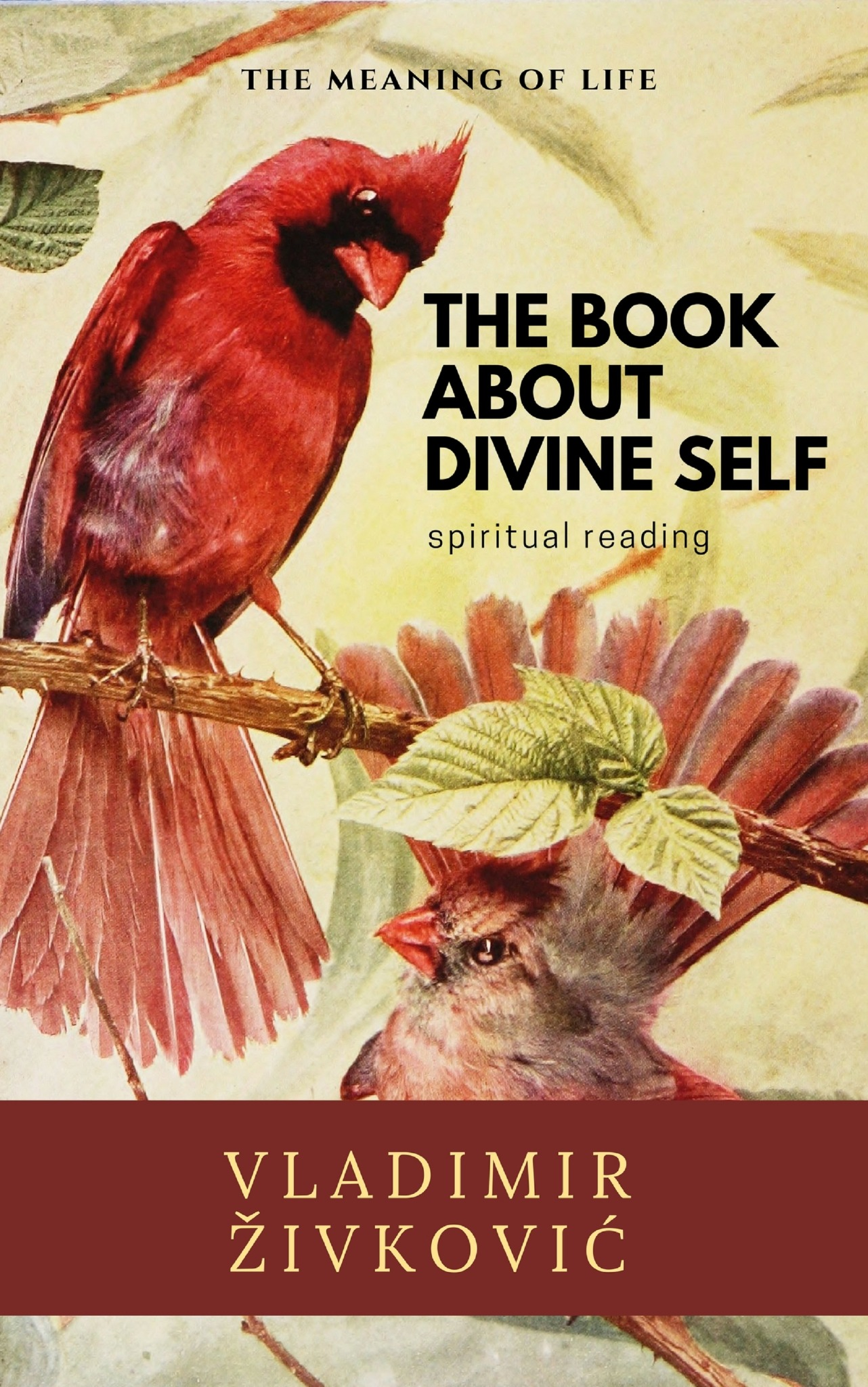 The Book About Divine Self