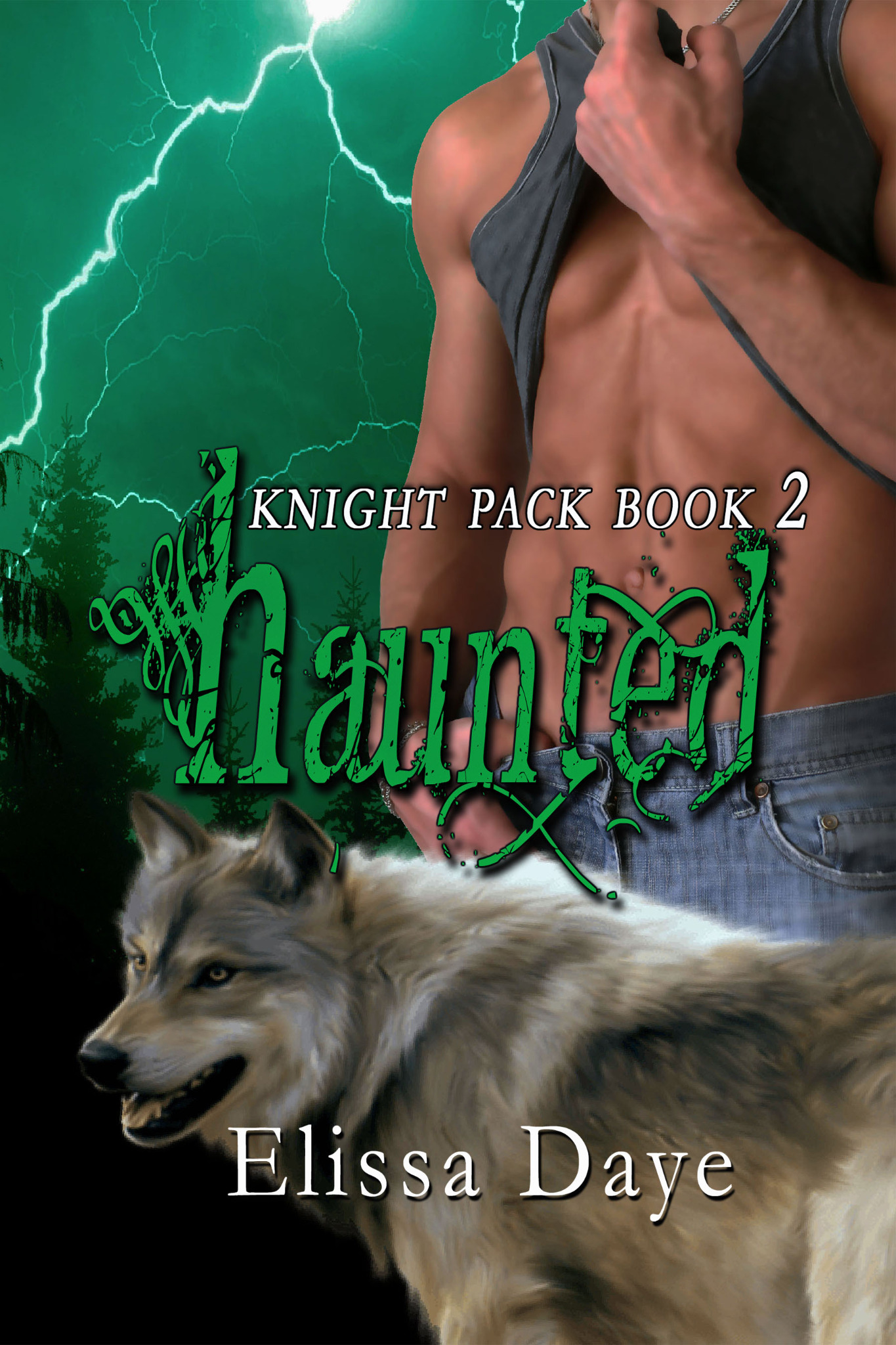 Haunted - Knight Pack Book 2