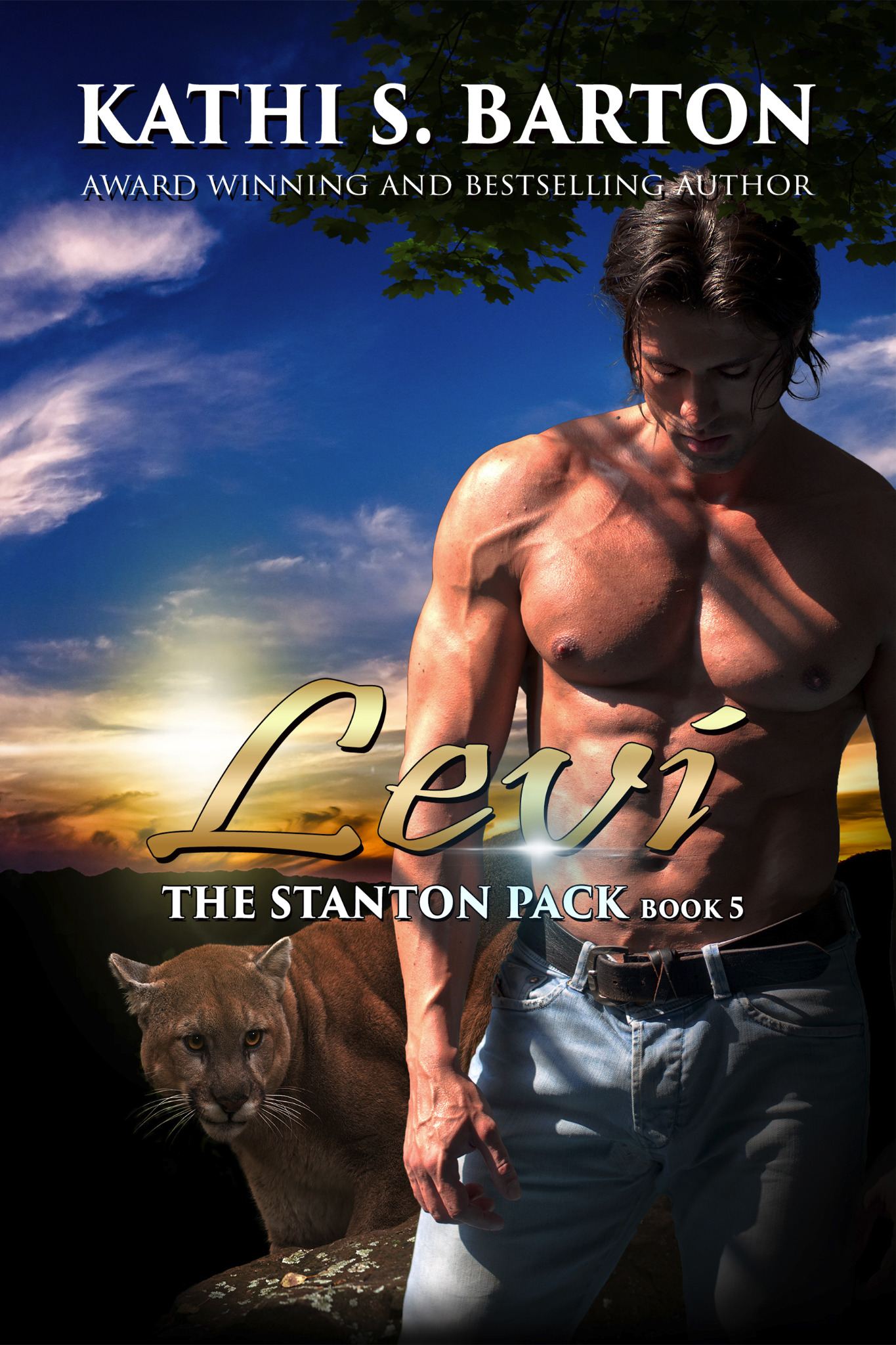 Levi - The Stanton Pack Book 5