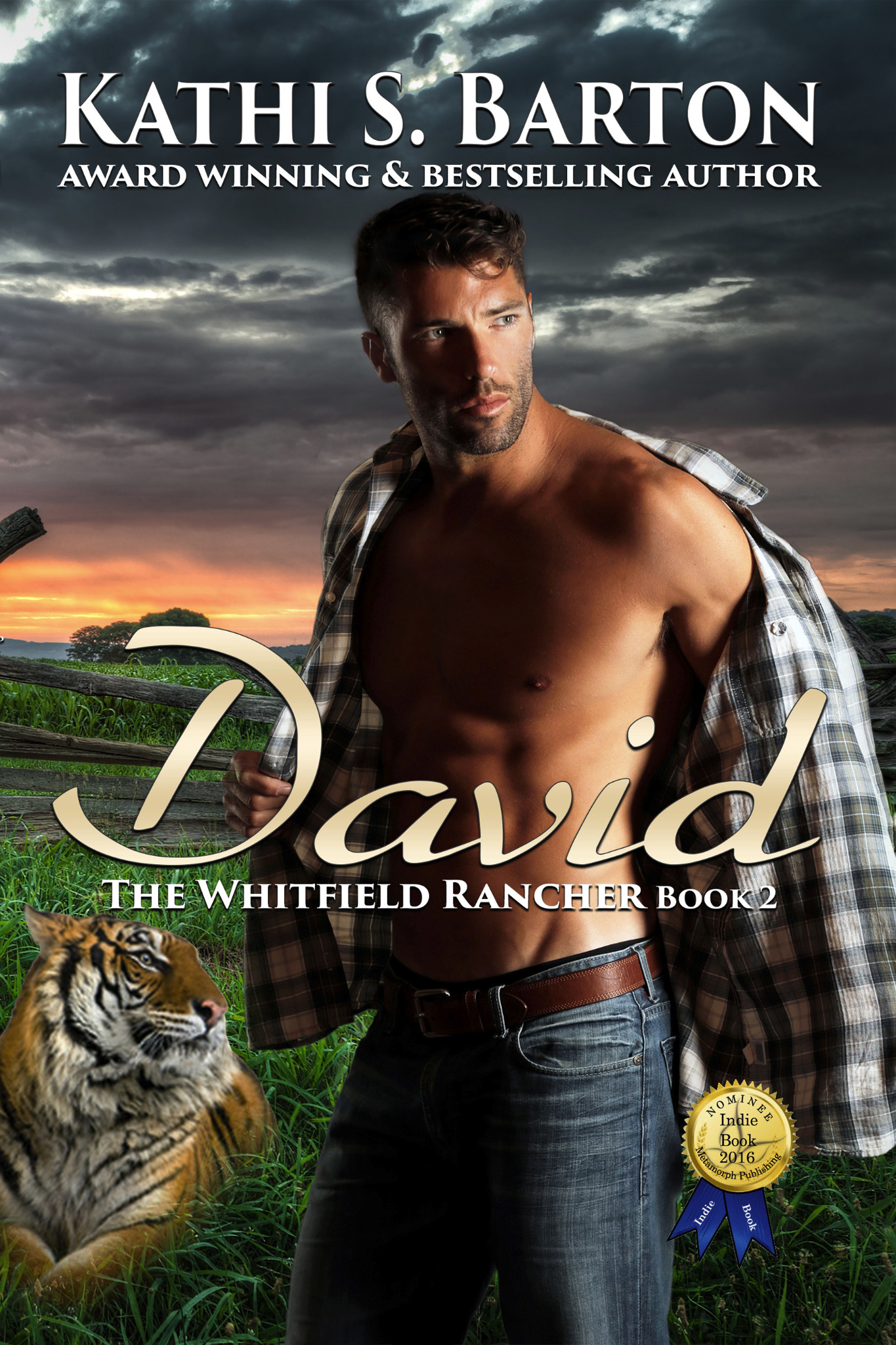 David - The Whitfield Rancher Book 2