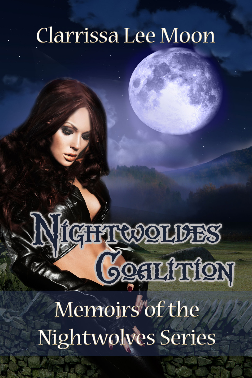 Nightwolves Coalition - Memoirs of the Nightwolves Series Book 1