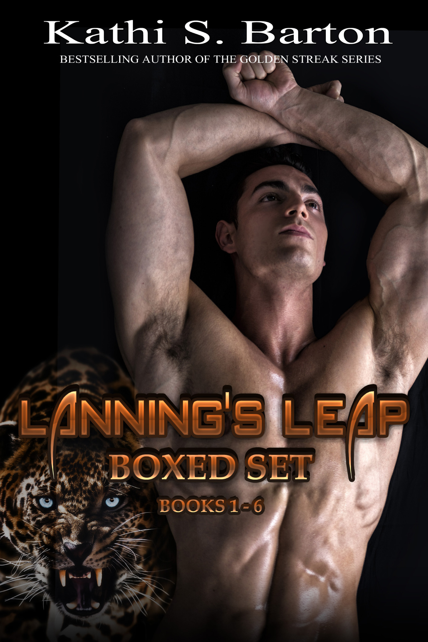Lanning's Leap Boxed Set Books 1-6
