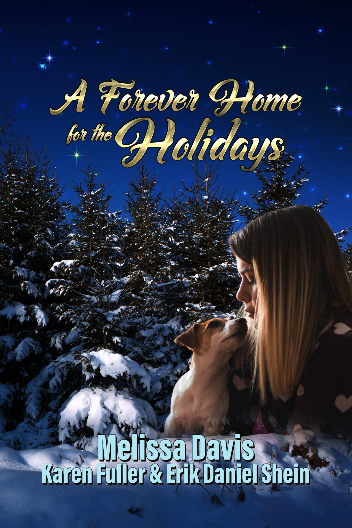 A Forever Home for the Holidays