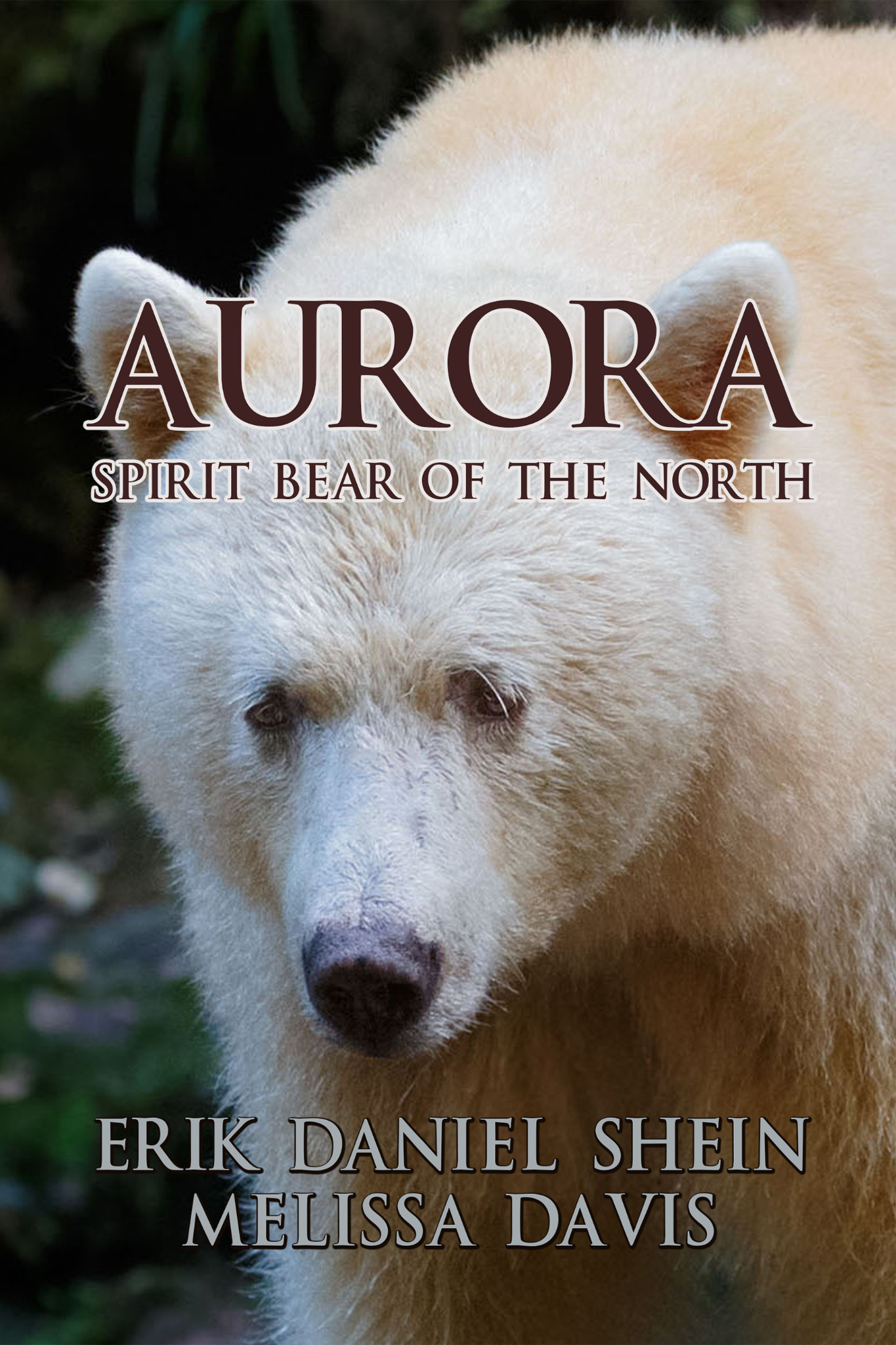 Aurora  Spirit Bear of the North