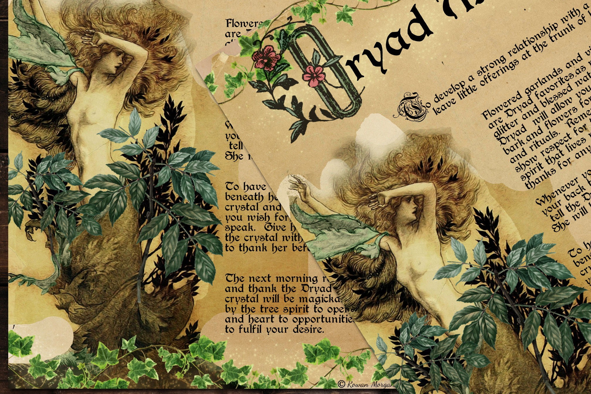 DRYAD FAERIE MAGICK Realm of the Fey