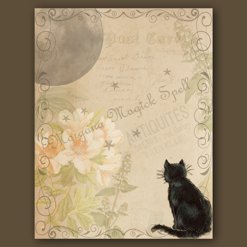 CAT and MOON  Blank Page