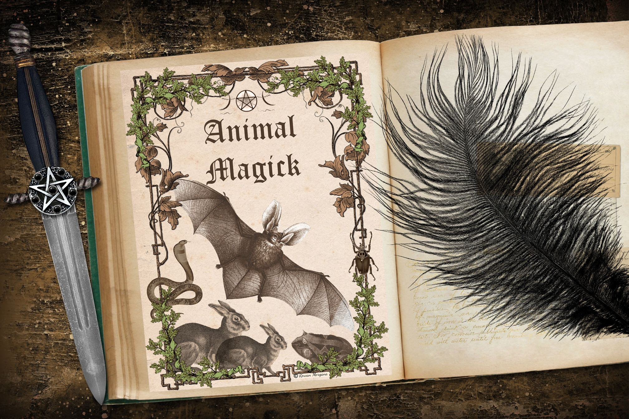 ANIMAL MAGICK Book of Shadows Title Page - Parchment