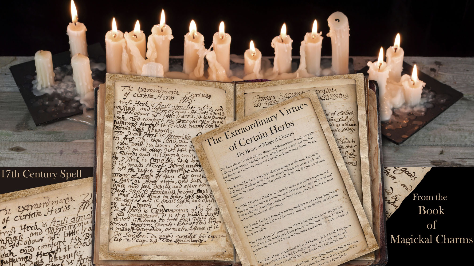 VIRTUES of HERBES  Ancient Handwritten Witchcraft Spell