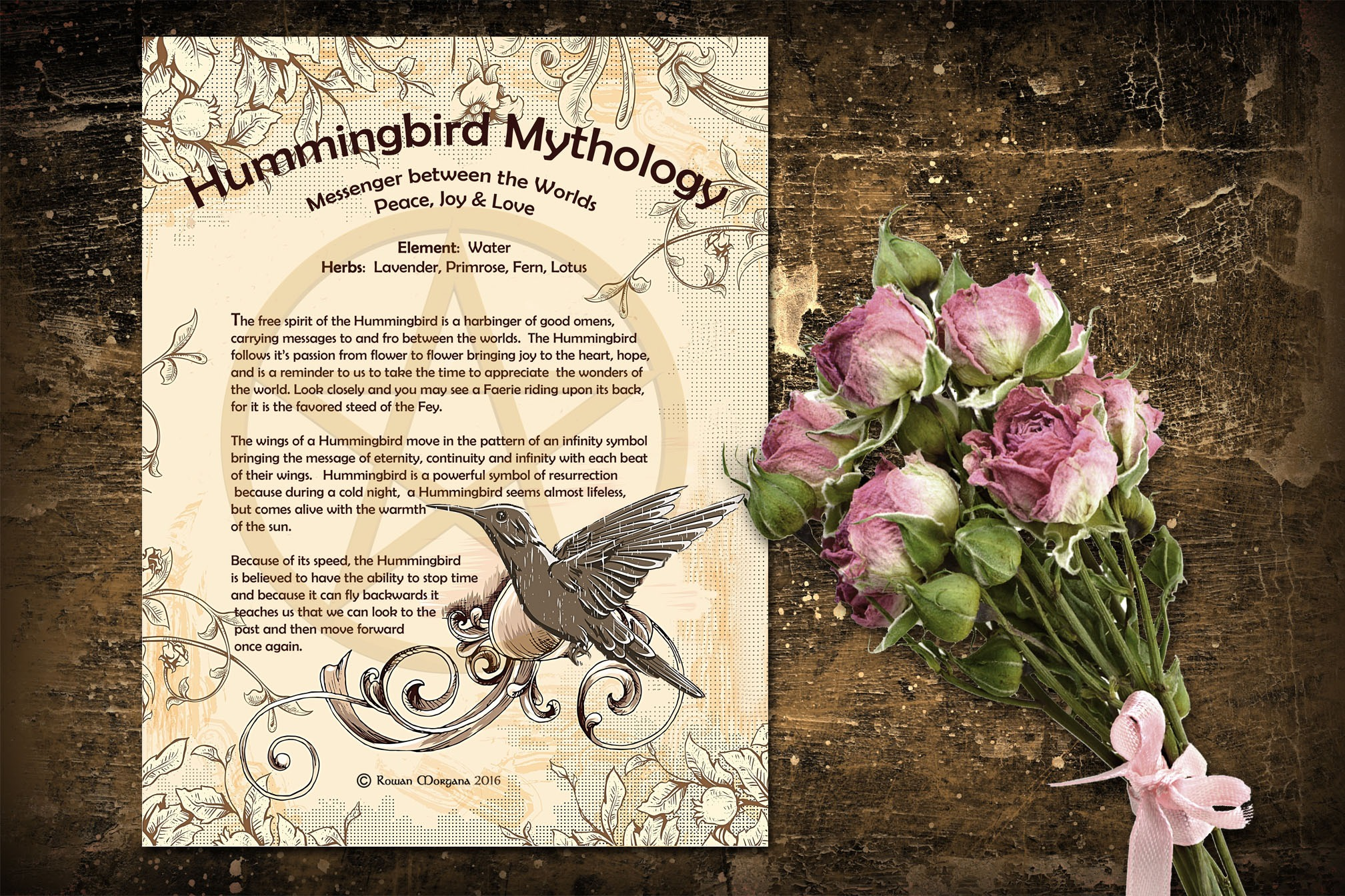 HUMMINGBIRD Myths & Correspondences
