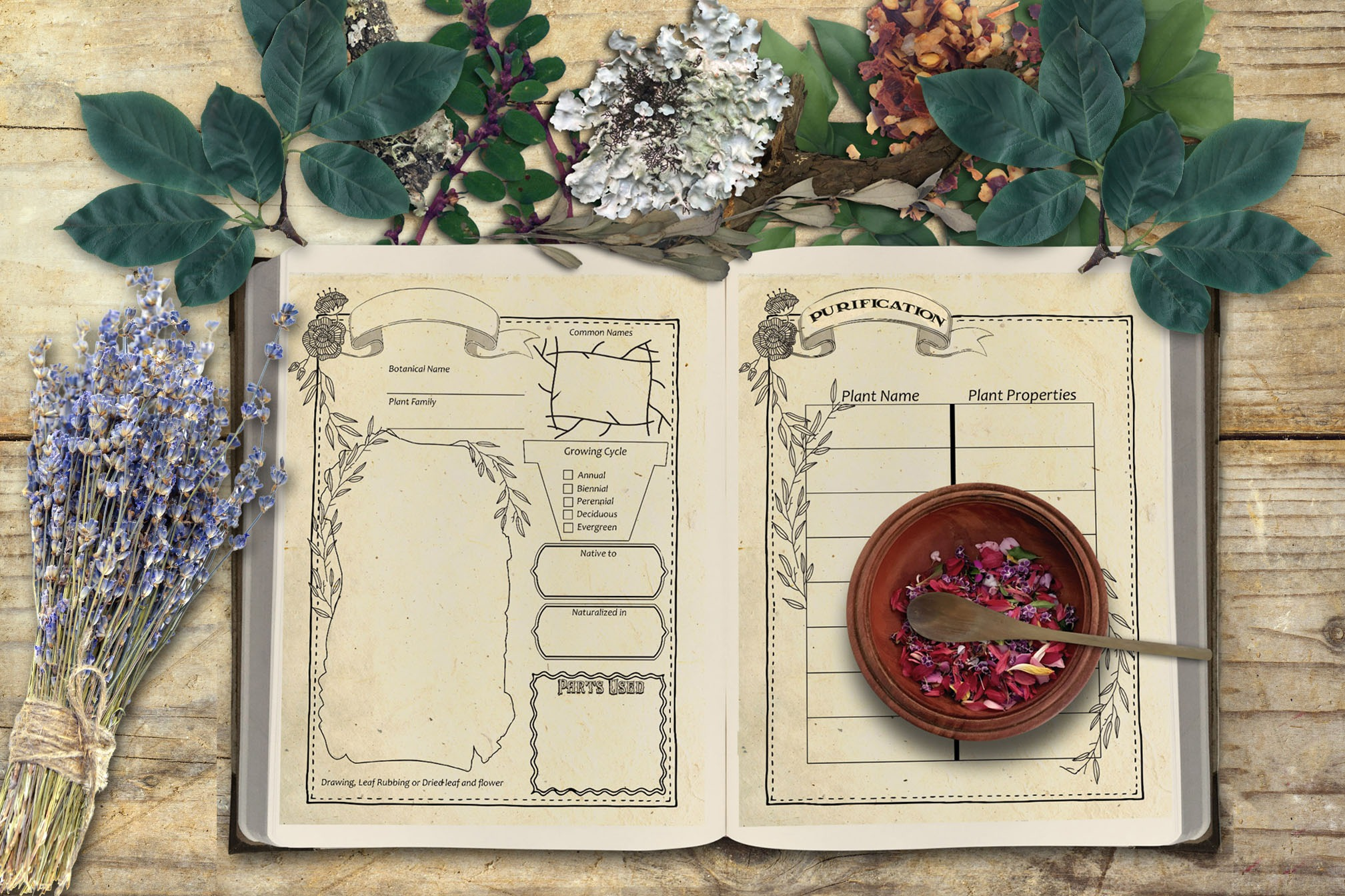 WITCH'S HERBAL JOURNAL 13 Pages