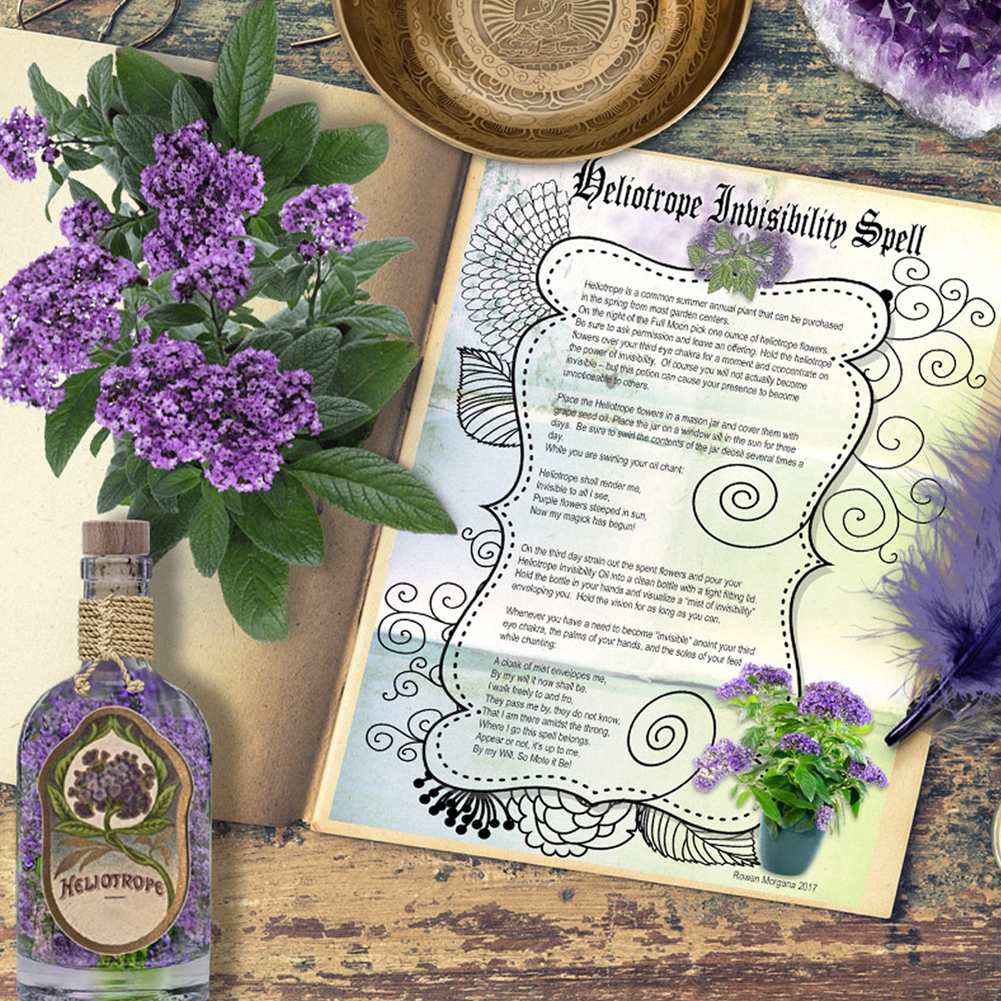 HELIOTROPE INVISIBILITY POTION With Labels