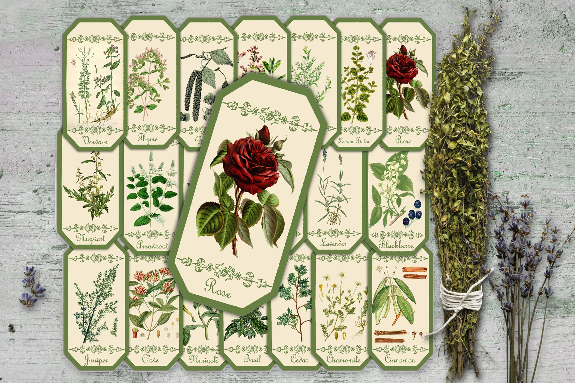 HERBAL APOTHECARY LABELS - 20 Labels