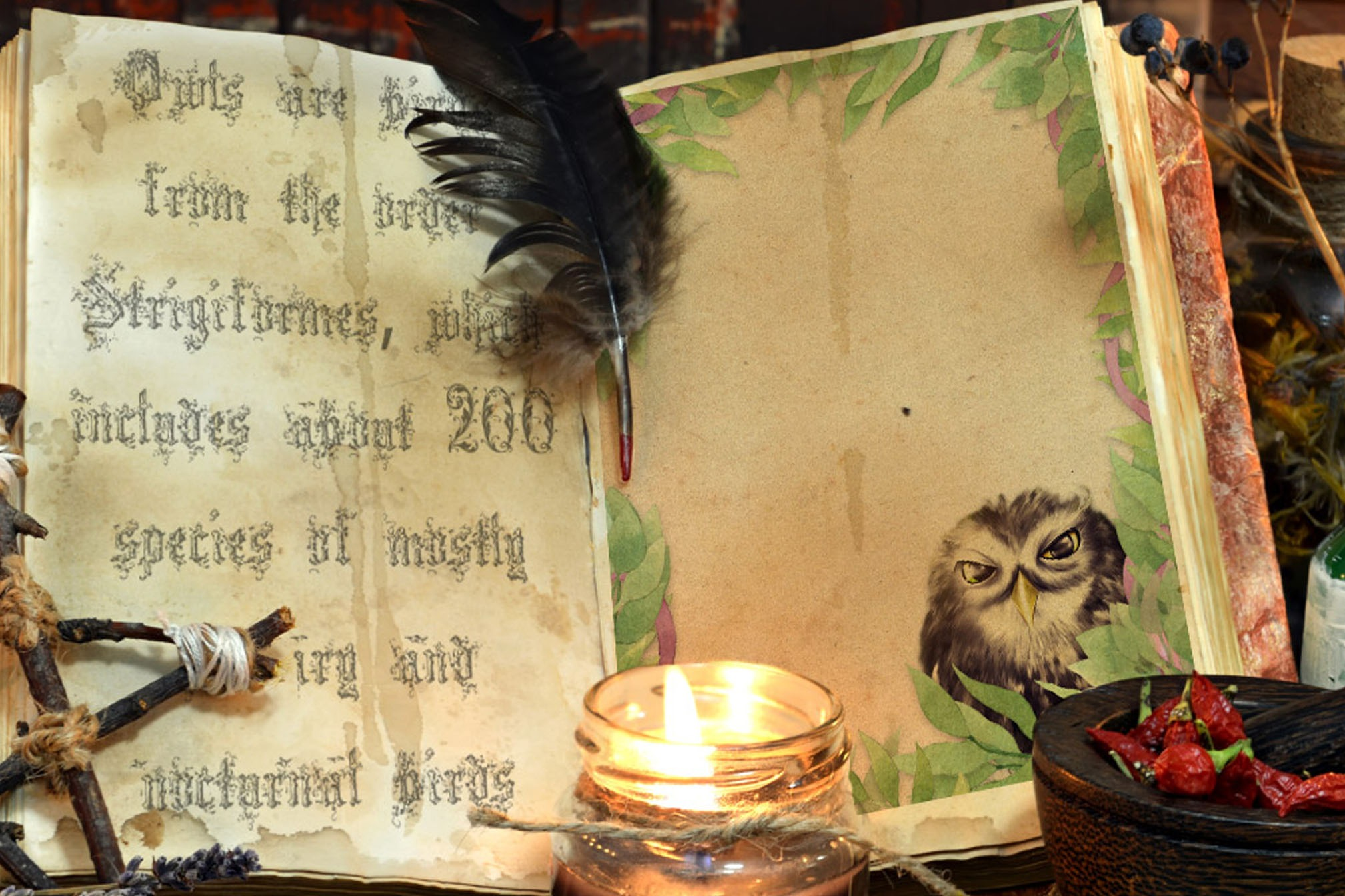 LITTLE OWL Page for Book of Shadows