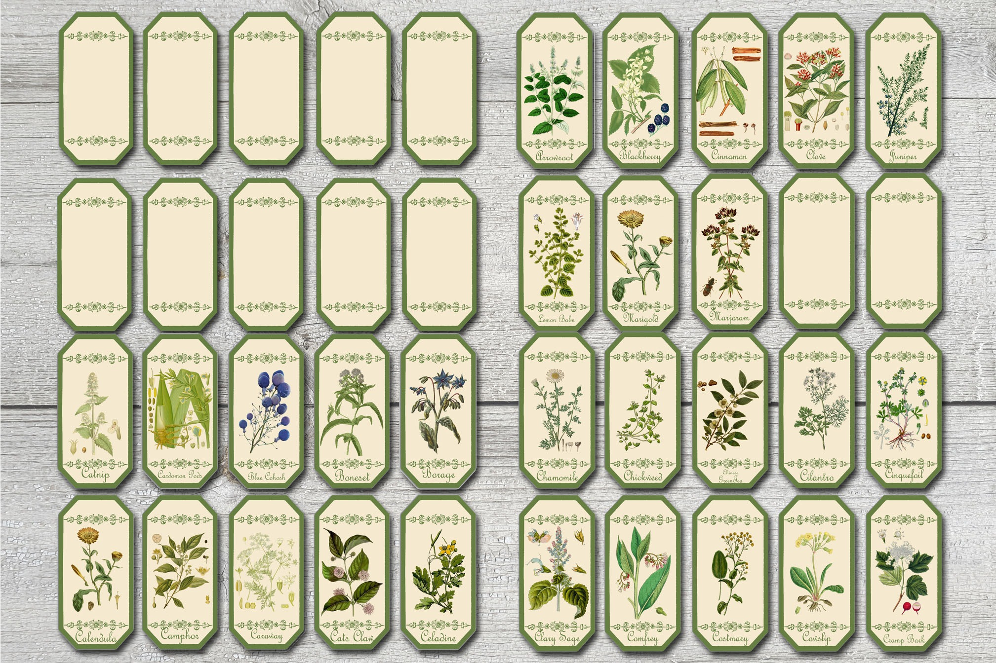 100 LABELS Herbal Apothecary| Herb & Spice Labels