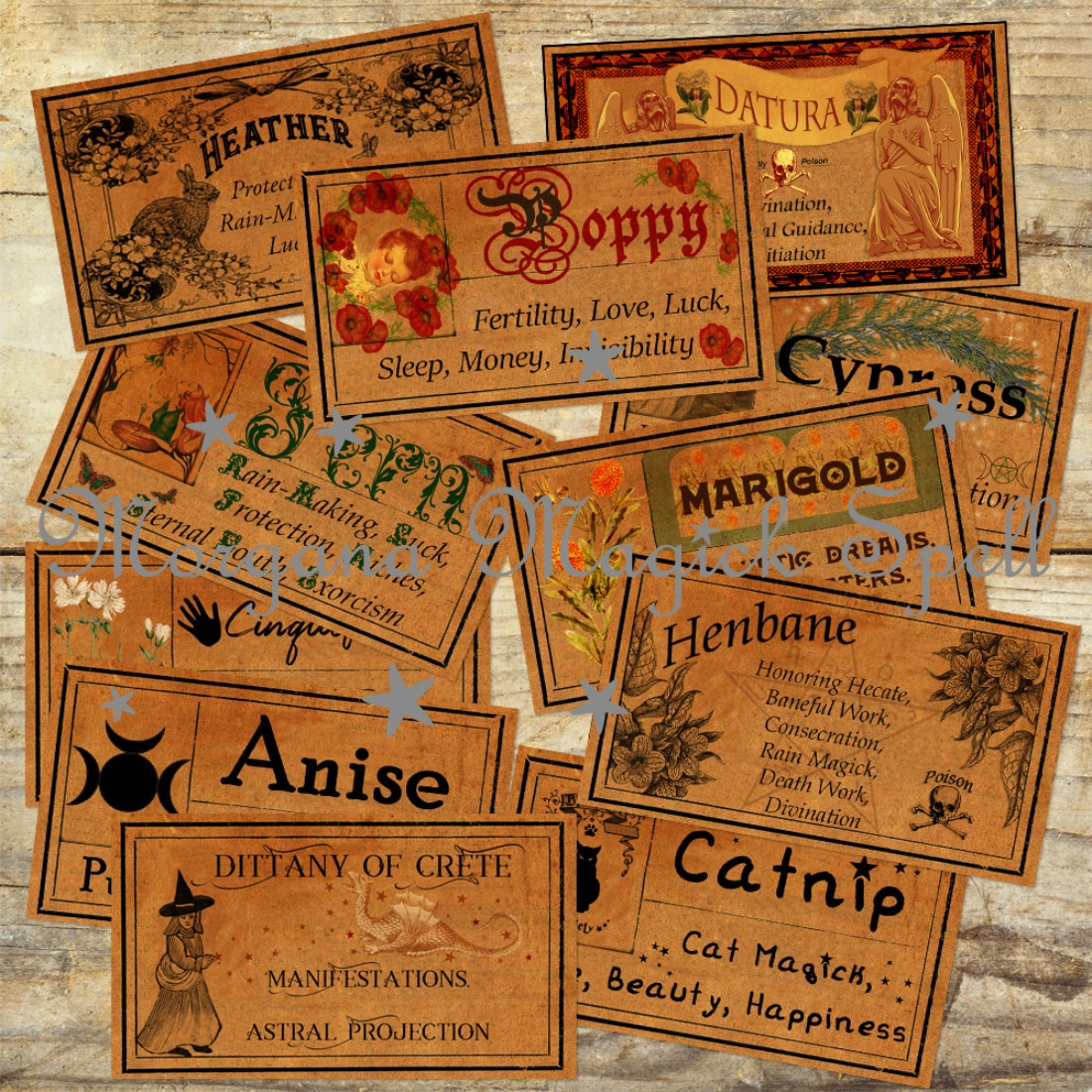 70 WITCHCRAFT APOTHECARY LABELS  Size 1.5