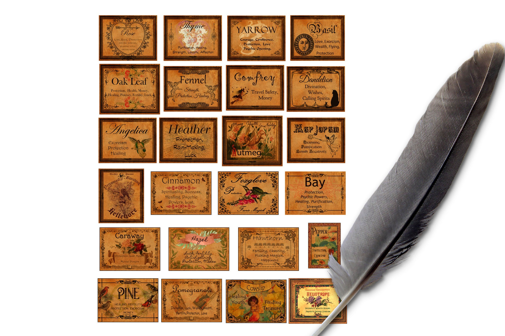"""70 WITCHCRAFT APOTHECARY LABELS  Size 1.5"""" x 2"""""""